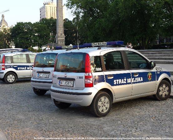 SM Świdnica: Wybrane interwencje na zgłoszenia obywateli w okresie 28.06 - 04.07.2019 r.